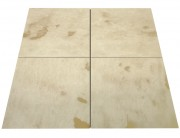 Marmur Collosea Fossil Beige POL 61cm x 61cm x 1,4cm