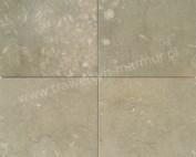 Płytki wapienne Limestone Seagrass 30,5cm x 30,5cm x 1cm